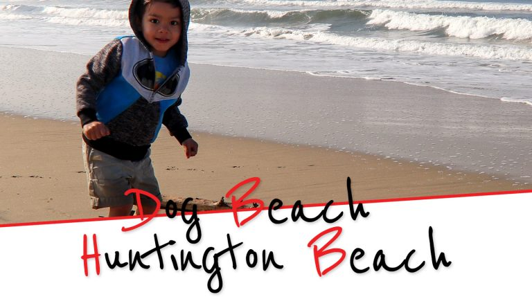 Have you Been to Dog Beach in Huntington Beach?